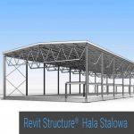 Logo grupy Revit Structure hala stalowa